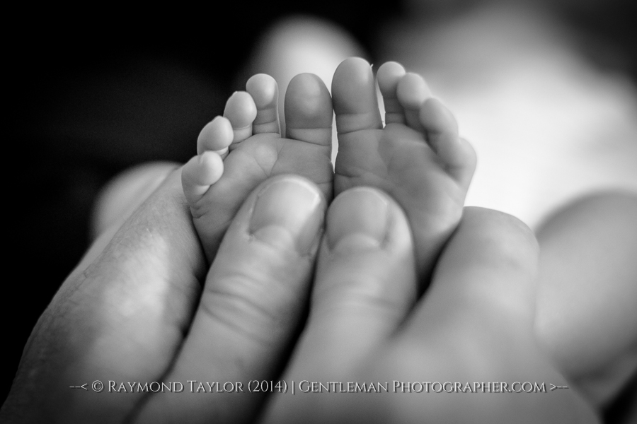 baby-photography-norwich